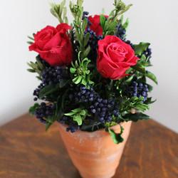 Raspberry red/blue terracotta