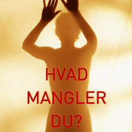 HVAD MANGLER DU?