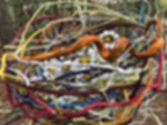 detail of yard nest.jpg