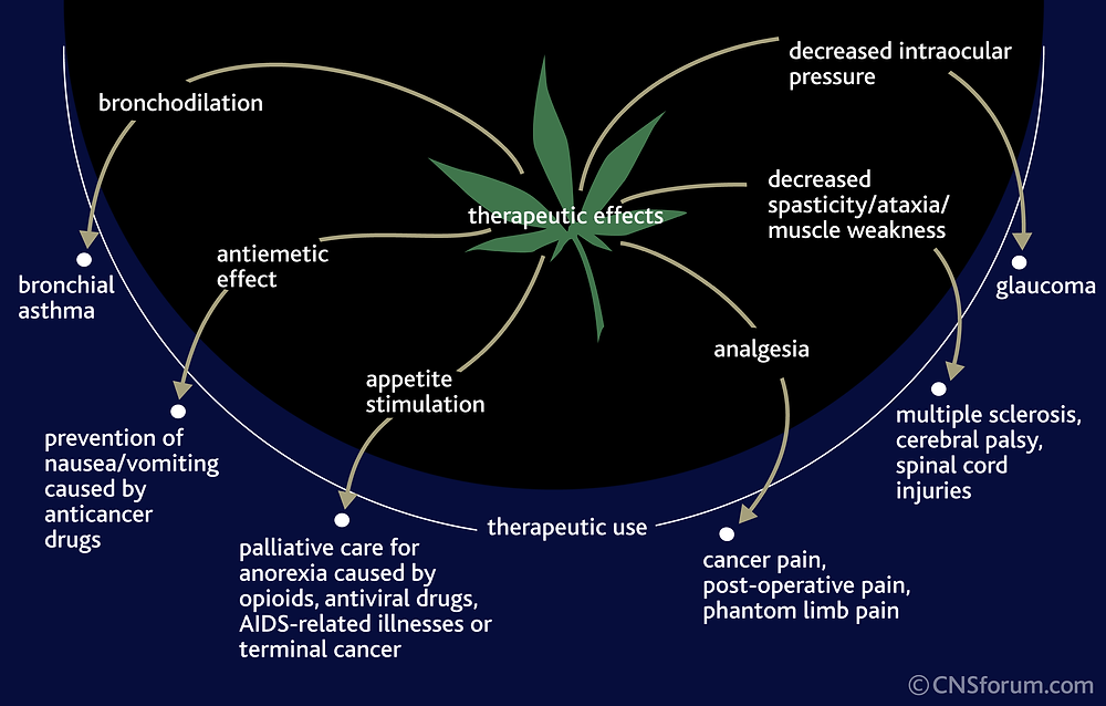 therapy_cannabis.png