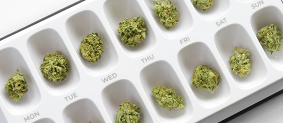 Can you REALLY microdose with Cannabis?