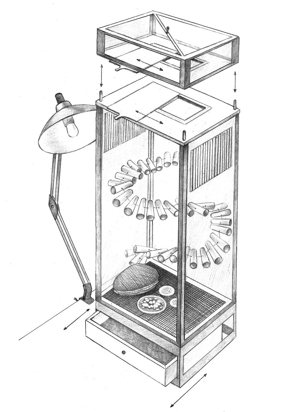 a cricket coop prototype