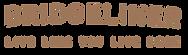 Bridgewater_Logo.png