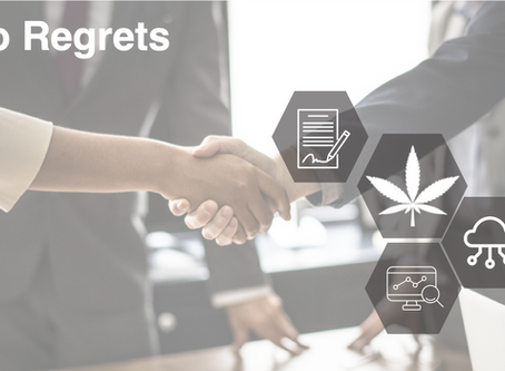 From The Cannabis Diaries #4: No Regrets