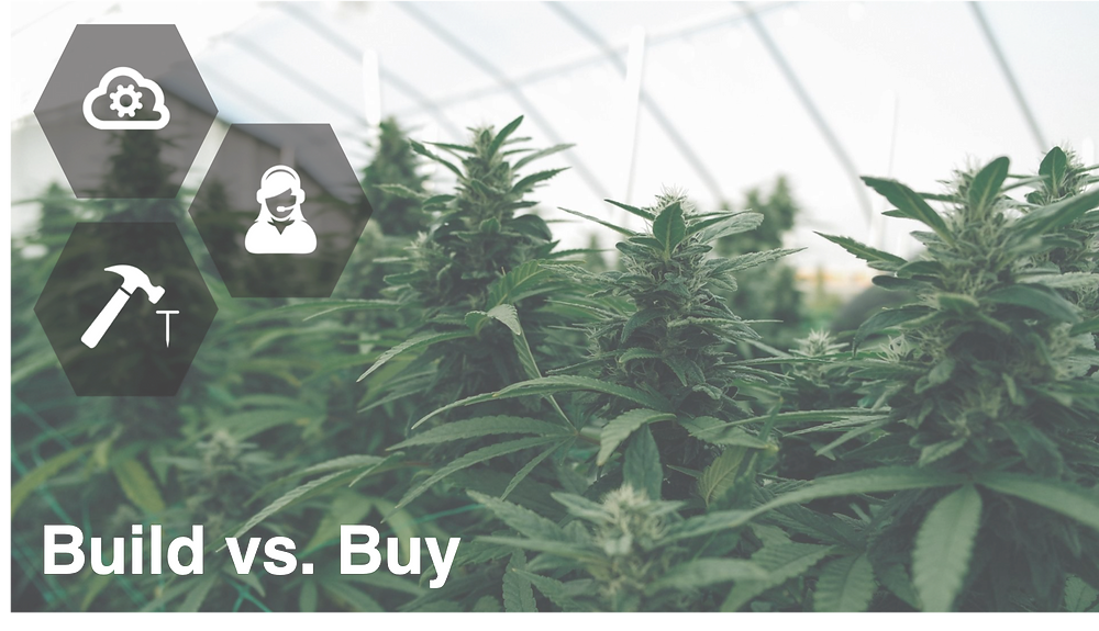 digital transformation, outsourcing IT, Cannabis business, cannabis technology, cannabis IT  IT services needed for cannabis cultivation  How to maximize your IT for cannabis  Outsource technology  Do you really need to outsource IT