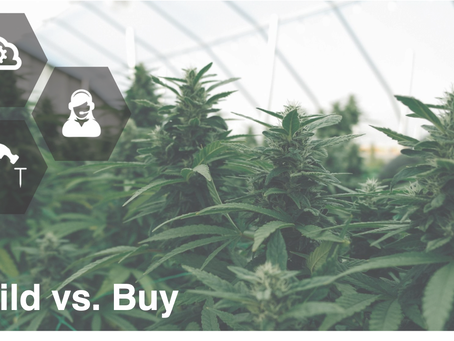 From The Cannabis Diaries #3: Build vs. Buy
