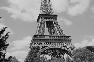 Paris's Pulse