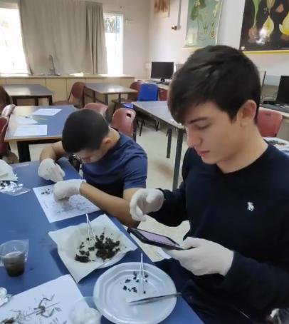 תלמידי מגמת ביולוגיה שכבה יב' במסגרת מחקר בשיתוף עם אוניברסיטת תל אביב