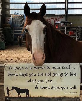 Horse 'Spirit' & Banner with '' ''