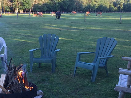 Campfire with horses behind in the Oasis at Spirit's Whisper Ranch