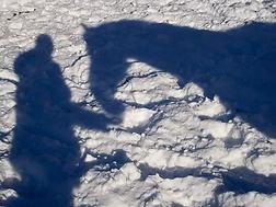 Horse-Person Shadow.webp