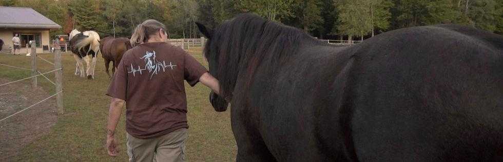 Kristi & horse 'EL' Standing-6-Feet-Strong