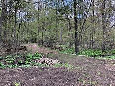 2021-May-8 - Trail to Labyrinth.jpeg
