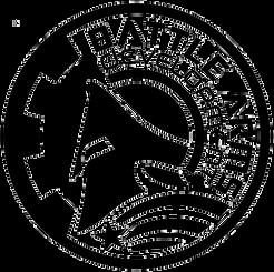 BAD-Logo.png