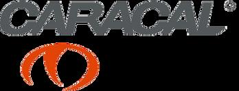 caracal-logo.png