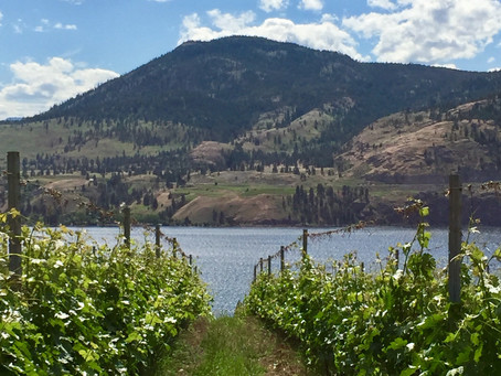 Discovering a little-known gem: Okanagan Valley, the world's northernmost wine region