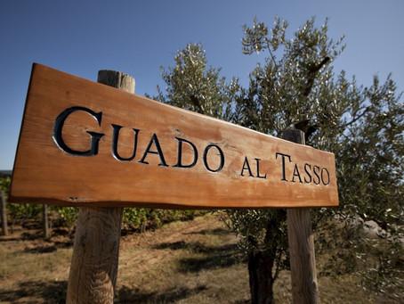 Antinori Guado al Tasso 1998–2011 and Matarrochio 2007–2011