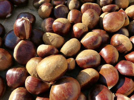 Chestnuts: Introduction, tips & quick ideas