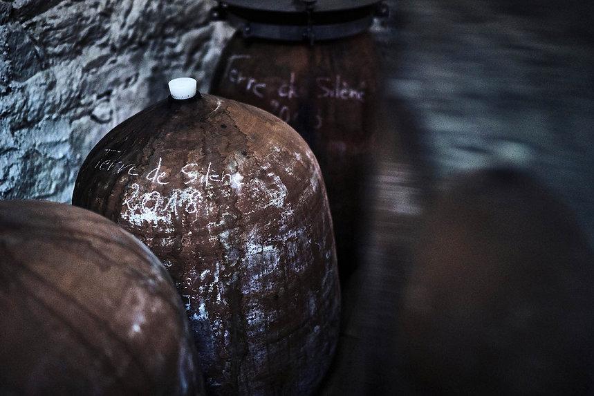 Découvrir de nouveaux vins bio et nature