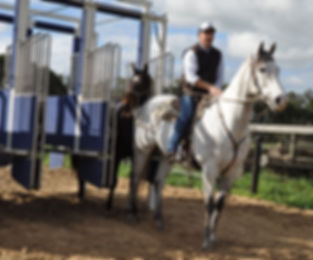 Booralite Park's Julien Welsh does some barrier work with a yearling