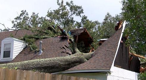 TREESHOMES Baton Rouge Damage.jpg