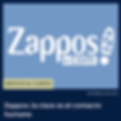 Zappos 300.png