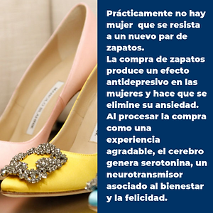 Zapatos Intro-Bold.png