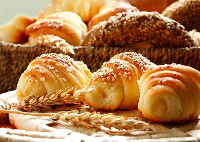 Bread Web 3-2.jpg