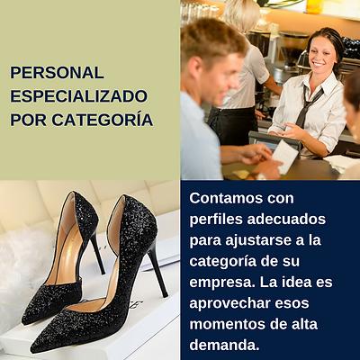 Personal_por_categoría.png
