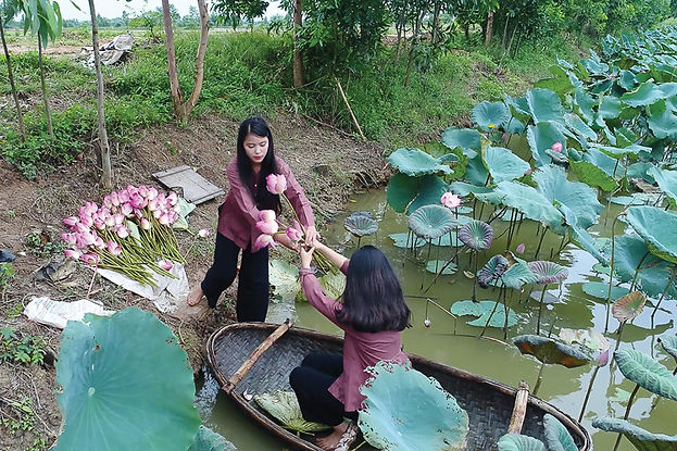 An aerial view, shot from a drone, picturing two women holding flowers on a boat in a lily pond.
