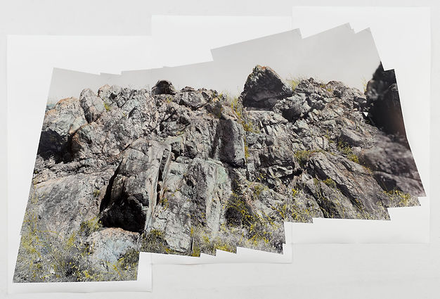 Theresa Ganz. Serpentine Pano