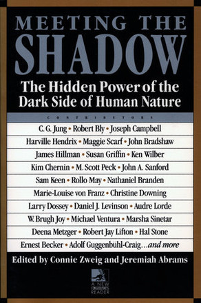 Book: Meeting the shadow