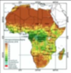 carte de biomasse aerienne afrique - cop
