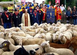 Moutonnades