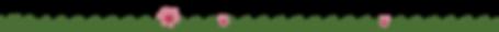 Bottom Grass-01.png