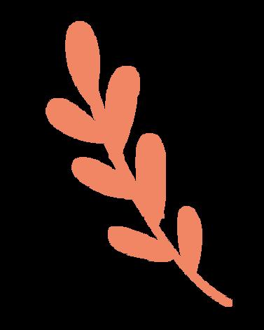 leaf-02.png