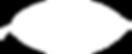 Coveco Interior Design, Interior Design, Kingscliff, Eco-friendly, Eco, Sustainable, Interior Design near me, Interior Design Kingscliff, Decorating, Decor, Homewares, Interior Design near me, local, gold coast, Kingscliff Interior Design, Coveco, Coveco, Sharyn Kidd