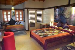Modern Vila room
