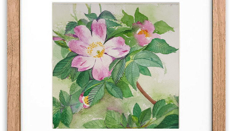 Wild Rose Wall Art