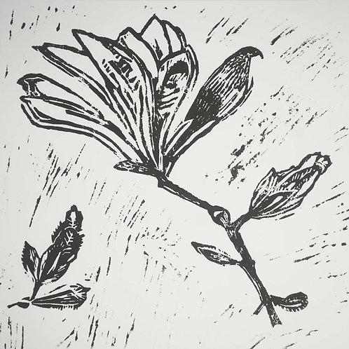 Original Hand Printed Magnolia Lino Print