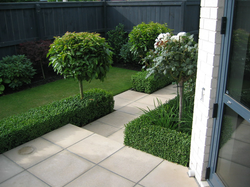 Landscape Design Christchurch garden