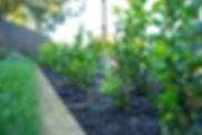 FORM Garden Architecture