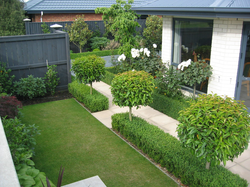 Landscape Design Christchurch H11
