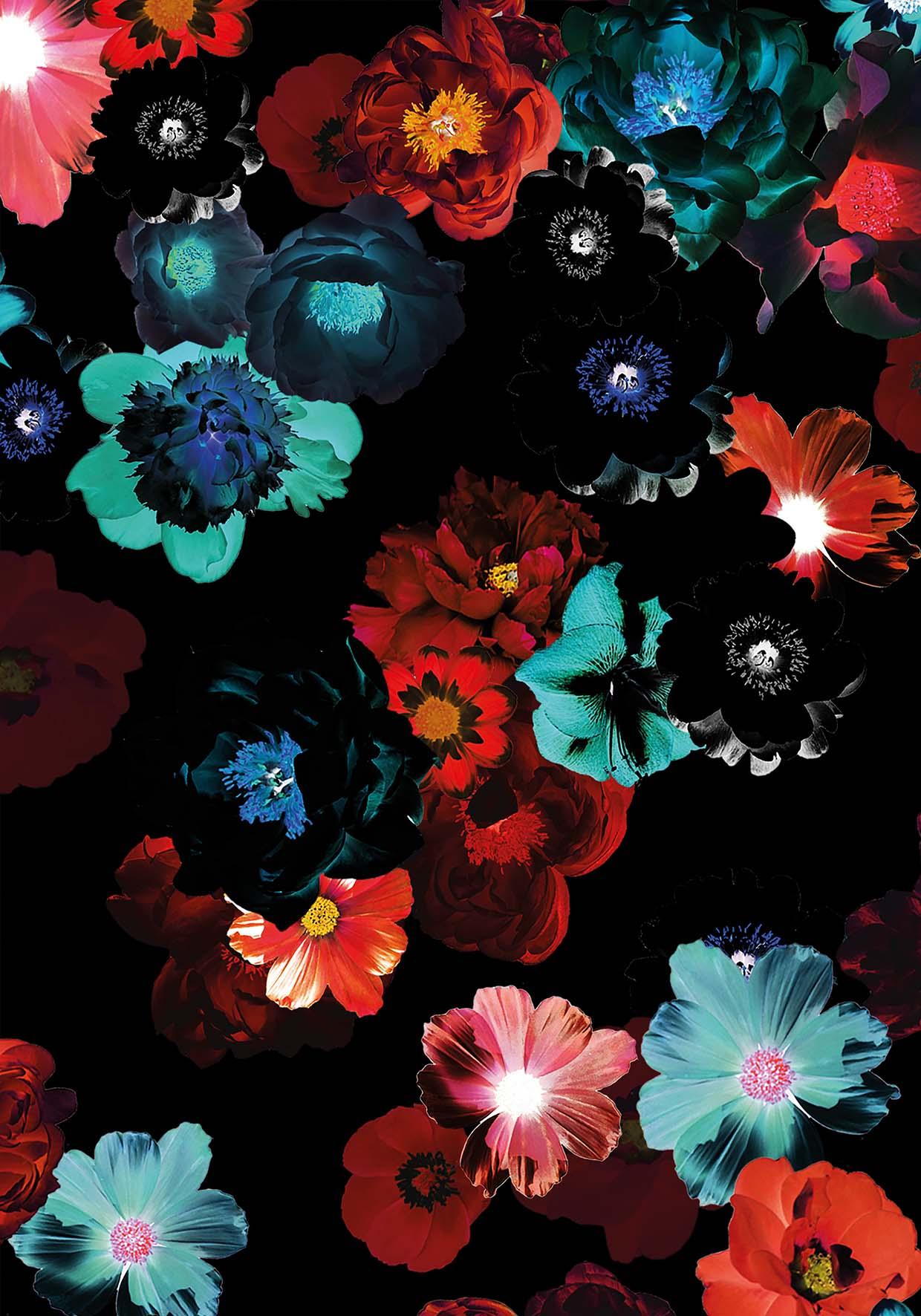 Floral Glow