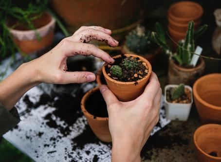 Scaricare lo stress: il giardino cittadino