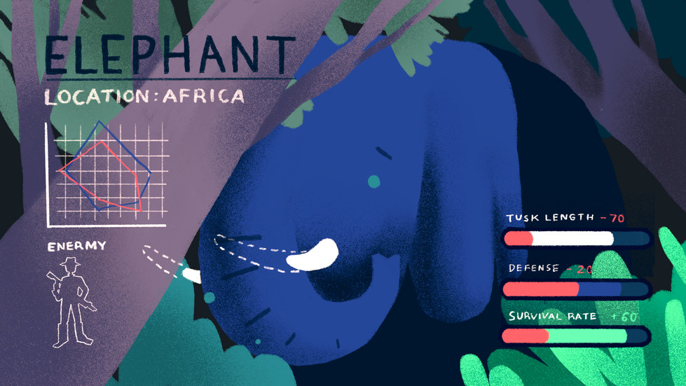 2 Elephant.jpg