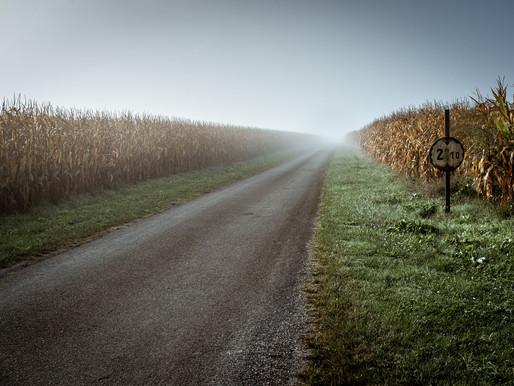 Concours Photo CCM Montesquieu | Paysage agricole | Photographe Bordeaux