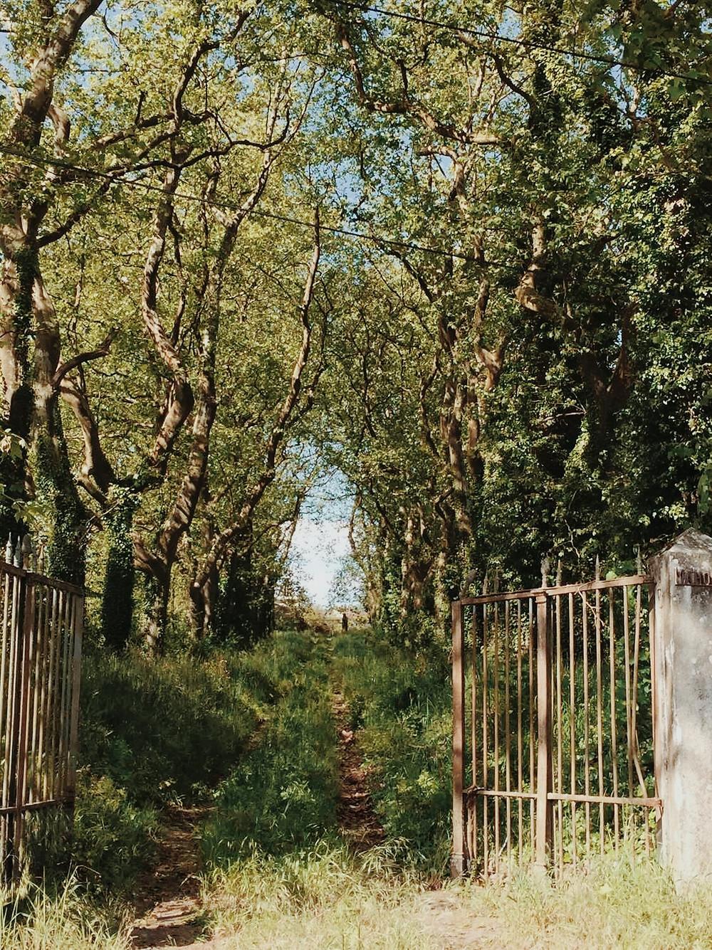 Domaine mahourat