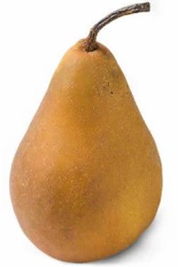 Bosc Pear - 1 each