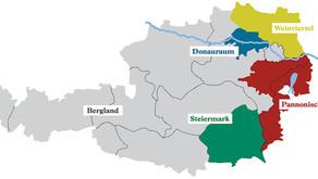 Wein Österreich